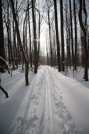 Cross-Country-Skiing-Coopers-Rock-WV-81