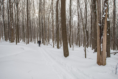 Cross-Country-Skiing-Coopers-Rock-WV-67