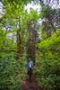 Umpqua Hot Springs_Oregon_photos by Gabe DeWitt_August 14, 2014-13