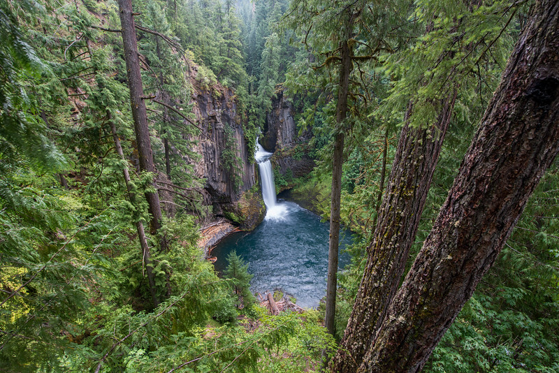 Toketee Falls_Oregon_photos by Gabe DeWitt_August 11, 2014-9
