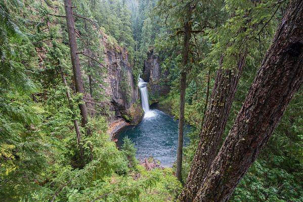 Toketee Falls_Oregon_photos by Gabe DeWitt_August 11, 2014-10