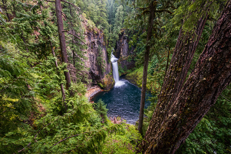 Toketee Falls_Oregon_photos by Gabe DeWitt_August 11, 2014-16-3