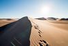 Amargosa Dunes_Nevada_photos by Gabe DeWitt_August 16, 2014-113