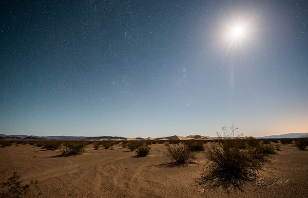 Amargosa Dunes_Nevada_photos by Gabe DeWitt_August 16, 2014-13