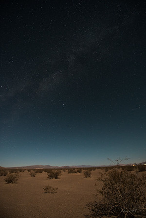 Amargosa Dunes_Nevada_photos by Gabe DeWitt_August 16, 2014-24