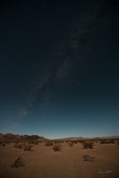 Amargosa Dunes_Nevada_photos by Gabe DeWitt_August 16, 2014-17