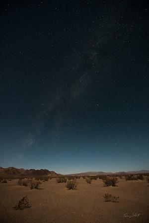 Amargosa Dunes_Nevada_photos by Gabe DeWitt_August 16, 2014-17