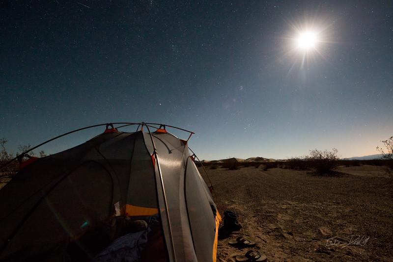 Amargosa Dunes_Nevada_photos by Gabe DeWitt_August 16, 2014-5
