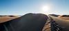 Amargosa Dunes_Nevada_photos by Gabe DeWitt_August 16, 2014-97