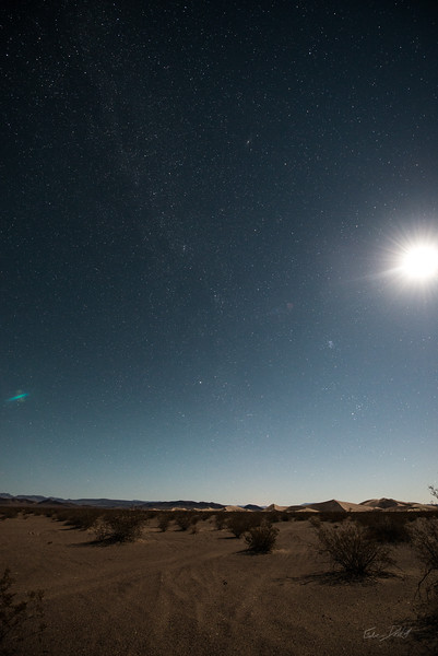 Amargosa Dunes_Nevada_photos by Gabe DeWitt_August 16, 2014-20
