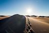 Amargosa Dunes_Nevada_photos by Gabe DeWitt_August 16, 2014-105
