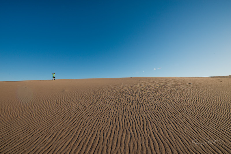 Amargosa Dunes_Nevada_photos by Gabe DeWitt_August 16, 2014-65