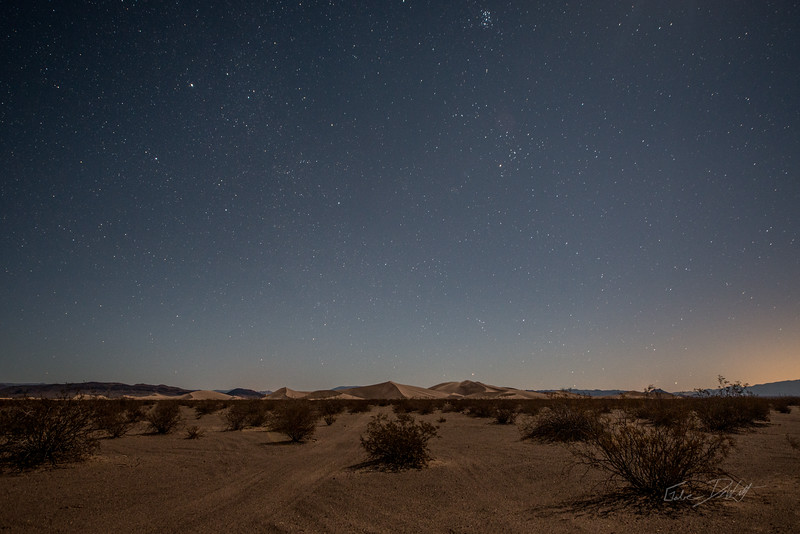 Amargosa Dunes_Nevada_photos by Gabe DeWitt_August 16, 2014-36
