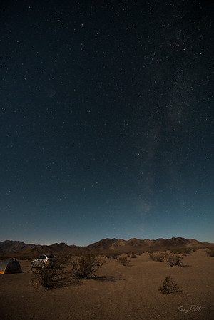 Amargosa Dunes_Nevada_photos by Gabe DeWitt_August 16, 2014-26