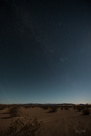 Amargosa Dunes_Nevada_photos by Gabe DeWitt_August 16, 2014-21