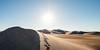 Amargosa Dunes_Nevada_photos by Gabe DeWitt_August 16, 2014-104