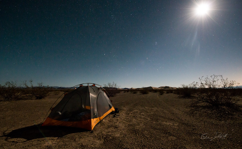 Amargosa Dunes_Nevada_photos by Gabe DeWitt_August 16, 2014-3