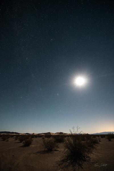 Amargosa Dunes_Nevada_photos by Gabe DeWitt_August 16, 2014-19