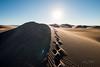 Amargosa Dunes_Nevada_photos by Gabe DeWitt_August 16, 2014-104-2