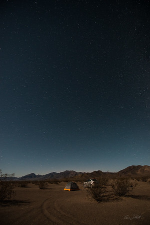 Amargosa Dunes_Nevada_photos by Gabe DeWitt_August 16, 2014-27