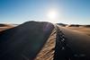 Amargosa Dunes_Nevada_photos by Gabe DeWitt_August 16, 2014-98
