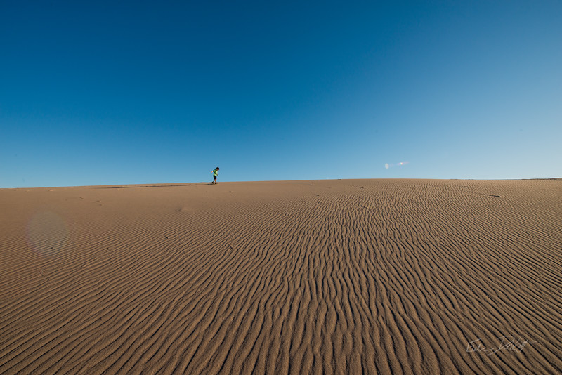 Amargosa Dunes_Nevada_photos by Gabe DeWitt_August 16, 2014-66