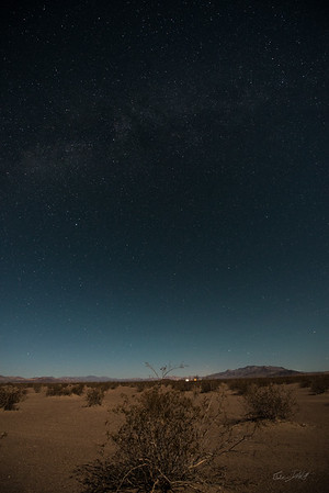 Amargosa Dunes_Nevada_photos by Gabe DeWitt_August 16, 2014-23