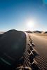Amargosa Dunes_Nevada_photos by Gabe DeWitt_August 16, 2014-108