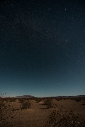 Amargosa Dunes_Nevada_photos by Gabe DeWitt_August 16, 2014-22
