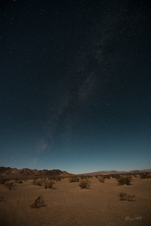 Amargosa Dunes_Nevada_photos by Gabe DeWitt_August 16, 2014-25