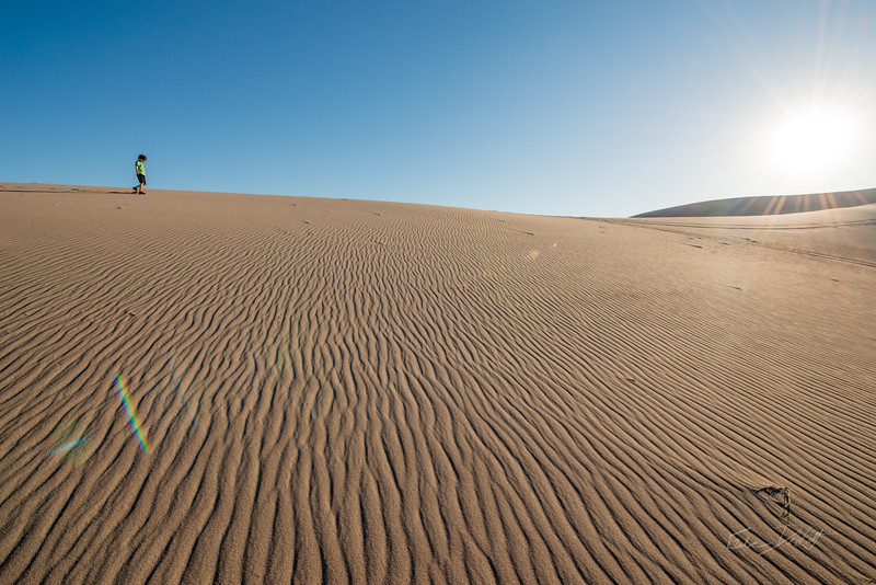 Amargosa Dunes_Nevada_photos by Gabe DeWitt_August 16, 2014-67