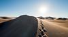 Amargosa Dunes_Nevada_photos by Gabe DeWitt_August 16, 2014-110