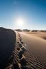 Amargosa Dunes_Nevada_photos by Gabe DeWitt_August 16, 2014-109