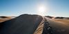 Amargosa Dunes_Nevada_photos by Gabe DeWitt_August 16, 2014-99