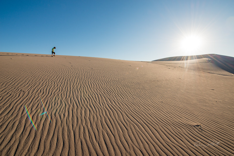 Amargosa Dunes_Nevada_photos by Gabe DeWitt_August 16, 2014-68