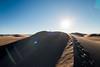 Amargosa Dunes_Nevada_photos by Gabe DeWitt_August 16, 2014-97-2