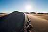 Amargosa Dunes_Nevada_photos by Gabe DeWitt_August 16, 2014-106