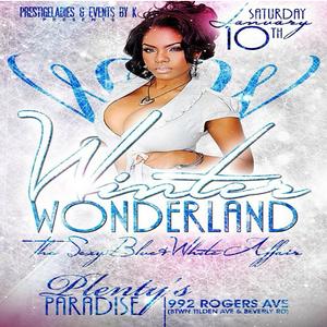 01/10/15 Winter Wonderland