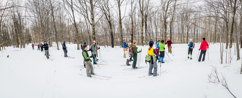 White; Grass; Hash; Ski; Canaan; Valley; West; Virginia; photo; Gabe; DeWitt; January; 2015; 126; Canaan Valley; Cross Country Skiing; Favorite things; Places; Seasons; West Virginia; White Grass; Winter; by Gabe DeWitt; cross country; skiing