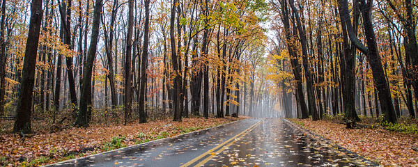 Autumn-at-Coopers-Crock-WV-18-2