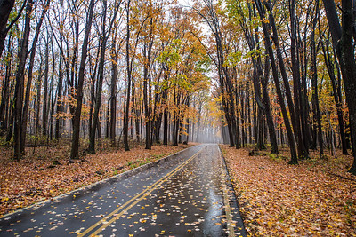 Autumn-at-Coopers-Crock-WV-13