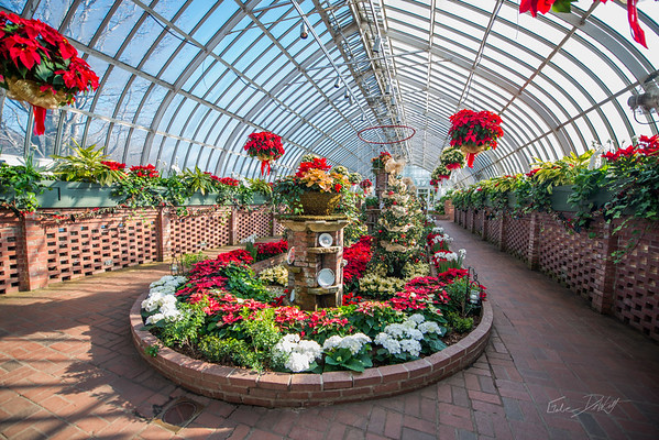 Phipps-Conservatory-and-Botanical-Gardens-2015-81