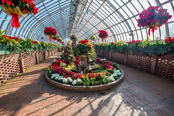 Phipps-Conservatory-and-Botanical-Gardens-2015-82
