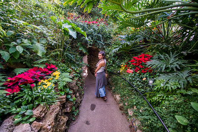 Phipps-Conservatory-and-Botanical-Gardens-2015-185