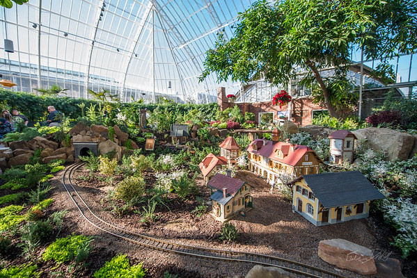 Phipps-Conservatory-and-Botanical-Gardens-2015-98