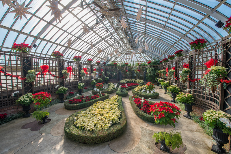 Phipps-Conservatory-and-Botanical-Gardens-2015-27