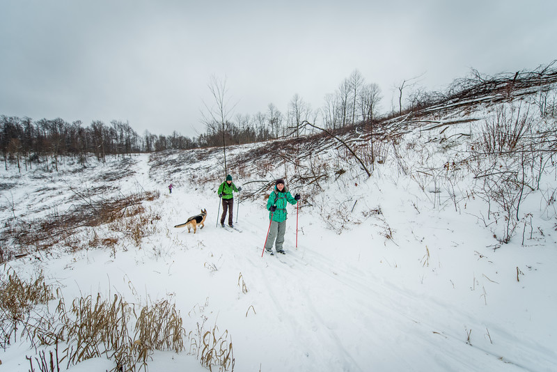 Cross Country Skiing_Snake Hill_West Virginia_photo by Gabe DeWitt_February 21, 2015-5