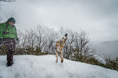 Cross Country Skiing_Snake Hill_West Virginia_photo by Gabe DeWitt_February 21, 2015-26