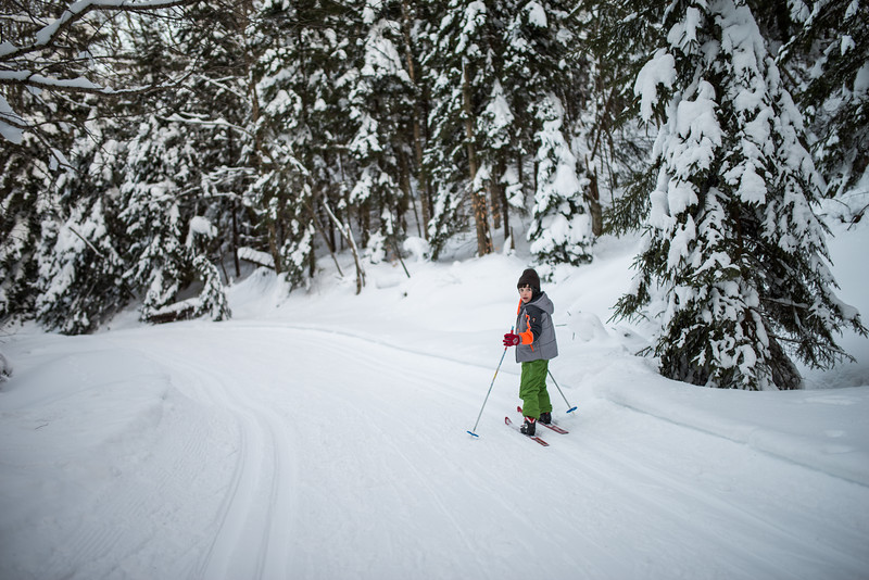 My Lad_Cross Country Skiing_White Grass_Canaan Valley_West Virginia_photo by Gabe DeWitt_February 28, 2015-214