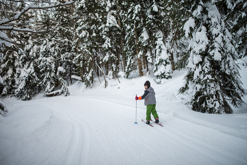 My Lad_Cross Country Skiing_White Grass_Canaan Valley_West Virginia_photo by Gabe DeWitt_February 28, 2015-215